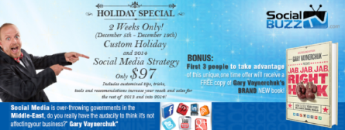 Holiday Special! Custom Social Media Strategy Game-plan for $97